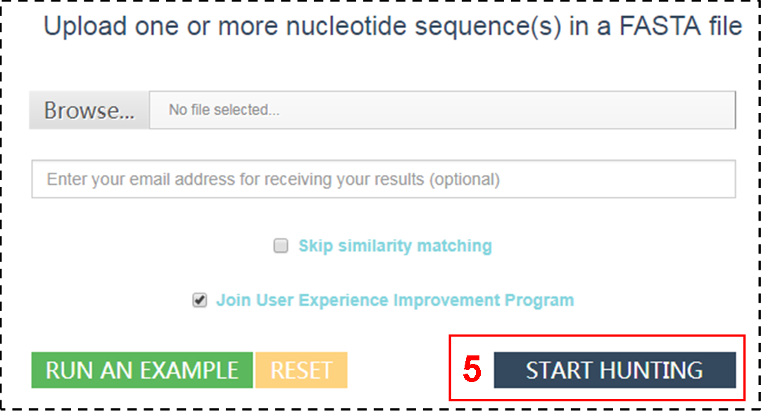 "Click ""START HUNTING"" to search active prophages"